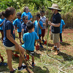 Aaron teaching how to plant sugar cane